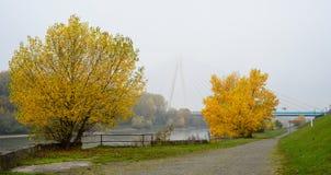Ένα ήρεμο πρωί φθινοπώρου, κίτρινα φύλλα των δέντρων, ένας ποταμός και μια γέφυρα στην υδρονέφωση Στοκ φωτογραφίες με δικαίωμα ελεύθερης χρήσης
