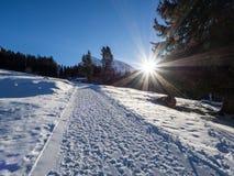 Ένα ίχνος σε Klosters Στοκ εικόνες με δικαίωμα ελεύθερης χρήσης