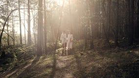 Ένα αγαπώντας ζεύγος περπατά μέσω των ξύλων στο ηλιοβασίλεμα απολαμβάνοντας τη φύση απόθεμα βίντεο