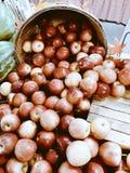 Ένα αγροτικό μπούσελ των μήλων στην επίδειξη στο Οχάιο - ΦΡΟΥΤΑ στοκ φωτογραφίες με δικαίωμα ελεύθερης χρήσης