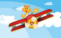 Ένα αεροπλάνο που πετά με μια τίγρη Στοκ Εικόνες