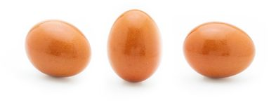 Ένα ακατέργαστο και φρέσκο αυγό Μπροστινές και πλάγιες όψεις στοκ φωτογραφία με δικαίωμα ελεύθερης χρήσης