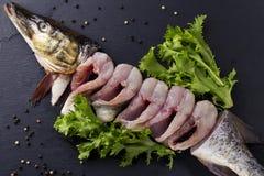 Ένα ακατέργαστο ψάρι Στοκ Φωτογραφία