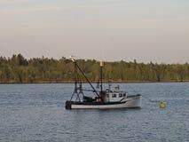 Ένα αλιευτικό σκάφος σε μια λίμνη με ένα δάσος των κωνοφόρων δέντρων πίσω από το Στοκ Φωτογραφία
