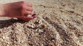 Ένα ανθρώπινο χέρι παίρνει τα θαλασσινά κοχύλια, άμμος στην παραλία φιλμ μικρού μήκους