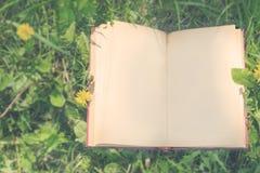 Ένα ανοικτό βιβλίο βρίσκεται στην πράσινη χλόη με τις πικραλίδες Η εκλεκτής ποιότητας EFF Στοκ Φωτογραφίες