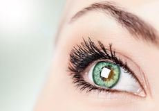 Αφηρημένο πράσινο μάτι στοκ φωτογραφίες με δικαίωμα ελεύθερης χρήσης