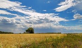 Ένα απέραντο άσπρο σύννεφο Στοκ φωτογραφίες με δικαίωμα ελεύθερης χρήσης