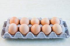 Ένα αυγό κοτόπουλου Στοκ Φωτογραφίες