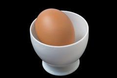 Ένα αυγό σε ένα άσπρο πλαστικό εμπορευματοκιβώτιο για το μικρόκυμα Στοκ Φωτογραφία