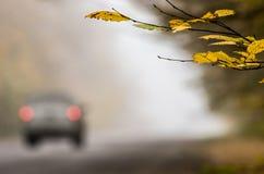 Ένα αυτοκίνητο με τους λαμπτήρες στάσεων σε έναν ομιχλώδη δρόμο φθινοπώρου Στοκ φωτογραφίες με δικαίωμα ελεύθερης χρήσης