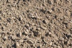 Ένα βουνό της άμμου Στοκ Φωτογραφίες