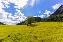 Ένα βουνό Στοκ εικόνες με δικαίωμα ελεύθερης χρήσης