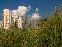Ένα βλέμμα στο νέο υψηλό σπίτι μέσω της παχιάς χλόης Στοκ εικόνα με δικαίωμα ελεύθερης χρήσης