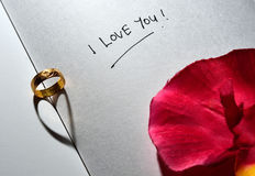 Ένα γαμήλιο δαχτυλίδι στο σαφές βιβλίο Στοκ φωτογραφία με δικαίωμα ελεύθερης χρήσης