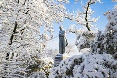 Ένα γραφικό χειμερινό τοπίο στο νησί μοναστηριών, που καλύπτεται με το χιόνι και hoarfrost στην πόλη Dnipro Στοκ Φωτογραφίες