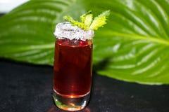 Ένα γυαλί ψεκάζεται με τη ζάχαρη, υπάρχει tincture φραουλών μέσα, ένα κλαδάκι της μέντας στην κορυφή σε ένα σκοτεινό κλίμα, στοκ φωτογραφία με δικαίωμα ελεύθερης χρήσης