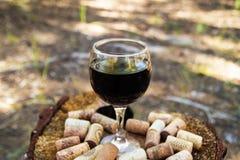 Ένα γυαλί με ένα κόκκινο κρασί και το κρασί βουλώνει σε ένα κολόβωμα σε ένα υπόβαθρο ενός θερινού δάσους Στοκ Φωτογραφία