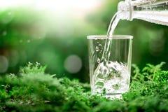 Ένα γυαλί του δροσερού γλυκού νερού στο φυσικό πράσινο υπόβαθρο Στοκ φωτογραφία με δικαίωμα ελεύθερης χρήσης