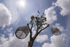 Ένα δέντρο με το κλουβί πουλιών για να ωραιοποιήσει τον κήπο στοκ φωτογραφίες