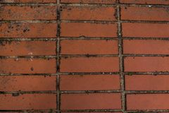 Ένα δείγμα της πλινθοδομής αργίλου, μια ορθογώνια μορφή, χρώμα τερακότας, χρησιμοποίησε κατά την τοποθέτηση του δρόμου στοκ φωτογραφία με δικαίωμα ελεύθερης χρήσης