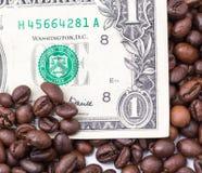 Ένα δολάριο στα φασόλια καφέ Στοκ φωτογραφία με δικαίωμα ελεύθερης χρήσης
