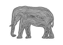 Ένα εικονίδιο απεικόνισης ελεφάντων στο Μαύρο αντιστάθμισε τη γραμμή Δακτυλικό αποτύπωμα s Στοκ Φωτογραφία