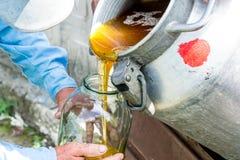 Ένα εμπορευματοκιβώτιο με ένα γλυκό γλυκό μέλι Μελισσοκόμος εργασίας Θεραπεία του προϊόντος της μελισσοκομίας Μαΐου, μέλι λουλουδ Στοκ Εικόνα