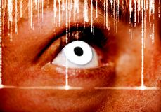 Ένα εξαιρετικό, οξυδερκές μάτι βλέμματος Κλείστε αυξημένος στοκ εικόνες