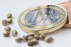 Ένα ευρο- νόμισμα με τους σπόρους μιας κάνναβης Στοκ Εικόνα