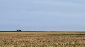Ένα ευρύ ανοικτό τοπίο, τομείς και ορίζοντας, με ένα συρμένο άλογο Amish με λάθη, κομητεία του Λάνκαστερ, PA στοκ εικόνες