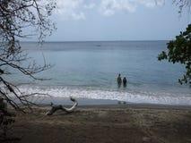 Ένα ζεύγος που απολαμβάνει μια όμορφη παραλία στις Καραϊβικές Θάλασσες απόθεμα βίντεο