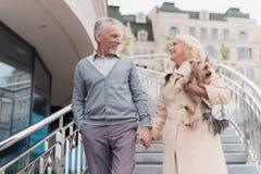 Ένα ηλικιωμένο ζεύγος περπατά Πηγαίνουν κάτω από τα σκαλοπάτια Μια γυναίκα έχει ένα σκυλί σε ετοιμότητα της Στοκ Εικόνα
