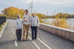 Ένα ηλικιωμένο ζεύγος περπατά στο πάρκο με έναν αρσενικό βοηθητικό ή ενήλικο εγγονό Φροντίζοντας για τους ηλικιωμένους, να προσφε στοκ φωτογραφία