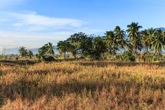 Ένα ηλιόλουστο πρωί στο του χωριού petobo έχασε λόγω της ρευστοποίησης στοκ εικόνες με δικαίωμα ελεύθερης χρήσης