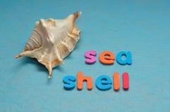 Ένα θαλασσινό κοχύλι με το κοχύλι θάλασσας λέξης Στοκ Φωτογραφία