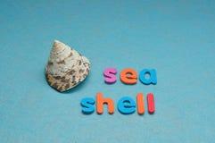 Ένα θαλασσινό κοχύλι με το κοχύλι θάλασσας λέξης Στοκ Εικόνα