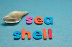 Ένα θαλασσινό κοχύλι με το κοχύλι θάλασσας λέξης Στοκ εικόνες με δικαίωμα ελεύθερης χρήσης