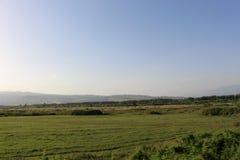 Ένα θερινό τοπίο από τη Βουλγαρία - grenn και το μπλε ουρανό, χρυσός ήλιος στοκ φωτογραφία με δικαίωμα ελεύθερης χρήσης
