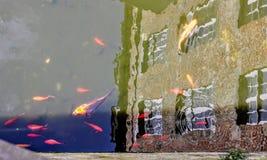 Ένα ιστορικό κτήριο απεικόνισε σε ένα σύνολο καναλιών της κολύμβησης koi Στοκ εικόνα με δικαίωμα ελεύθερης χρήσης