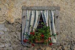 Ένα ιταλικό παράθυρο με τα λουλούδια Στοκ Εικόνα