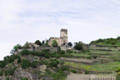 Ένα κάστρο κοντά στους αμπελώνες στοκ εικόνες