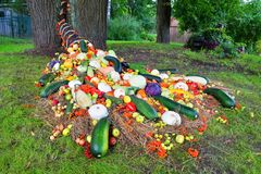 Ένα κέρας της Αμαλθιας των ώριμων λαχανικών και των μούρων στο χορτοτάπητα Στοκ Φωτογραφίες