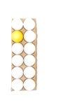 Ένα κίτρινο αυγό Πάσχας Στοκ εικόνες με δικαίωμα ελεύθερης χρήσης