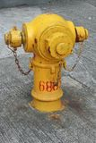Ένα κίτρινο στόμιο υδροληψίας πυρκαγιάς στο Χονγκ Κονγκ Στοκ Εικόνες