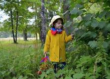 Ένα καλάθι λουλουδιών του δασικού παιδικής ηλικίας ομορφιάς πορτρέτου πράσινου προσώπου εγκαταστάσεων δέντρων ανθρώπων χλόης άνοι Στοκ Εικόνες