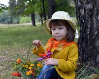 Ένα καλάθι λουλουδιών του δασικού παιδικής ηλικίας ομορφιάς πορτρέτου πράσινου προσώπου εγκαταστάσεων δέντρων ανθρώπων χλόης άνοι Στοκ εικόνα με δικαίωμα ελεύθερης χρήσης