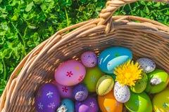 Ένα καλάθι με τις ζωηρόχρωμα διακοσμήσεις και τα λουλούδια αυγών Πάσχας στη χλόη με τα τριφύλλια στοκ φωτογραφία με δικαίωμα ελεύθερης χρήσης