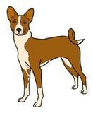 Ένα καφετί σκυλί Στοκ εικόνα με δικαίωμα ελεύθερης χρήσης