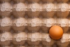 Ένα καφετί συνεχές αυγό κοτόπουλου σε ένα κουτί από χαρτόνι Στοκ Φωτογραφία